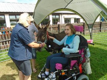 Activities at Bidwell Brook